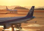 ふじいあきらさんが、広島空港で撮影したチャイナエアライン 737-809の航空フォト(飛行機 写真・画像)