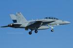 Scotchさんが、ウィッビーアイランド海軍航空ステーションで撮影したアメリカ海軍 EA-18G Growlerの航空フォト(飛行機 写真・画像)