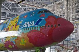 しゅあさんが、羽田空港で撮影した全日空 747-481(D)の航空フォト(写真)