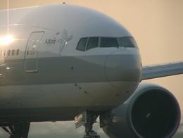 JA504Kさんが、羽田空港で撮影した日本航空 777-246の航空フォト(飛行機 写真・画像)