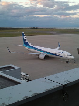 ANA STARALLIANCE 新潟さんが、新潟空港で撮影した全日空 737-881の航空フォト(飛行機 写真・画像)