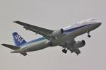 camelliaさんが、成田国際空港で撮影した全日空 A320-214の航空フォト(写真)