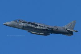 Scotchさんが、ノースアイランド海軍航空ステーション・ハスレーフィールドで撮影したアメリカ海兵隊 AV-8B Harrier IIの航空フォト(飛行機 写真・画像)