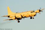 Chofu Spotter Ariaさんが、厚木飛行場で撮影したアメリカ海軍 P-3C AIPの航空フォト(飛行機 写真・画像)