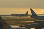 ふじいあきらさんが、羽田空港で撮影した全日空 737-881の航空フォト(写真)