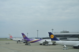 mickeyさんが、中部国際空港で撮影したルフトハンザドイツ航空 A340-311の航空フォト(写真)