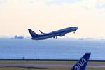 ふじいあきらさんが、羽田空港で撮影した全日空 737-881の航空フォト(飛行機 写真・画像)