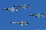 Scotchさんが、ノースアイランド海軍航空ステーション・ハスレーフィールドで撮影したアメリカ海軍 F-5N Tiger IIの航空フォト(飛行機 写真・画像)