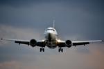 シマクロ7さんが、伊丹空港で撮影したANA & JPエクスプレスの航空フォト(飛行機 写真・画像)