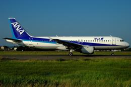 jun☆さんが、名古屋飛行場で撮影した全日空 A320-211の航空フォト(飛行機 写真・画像)