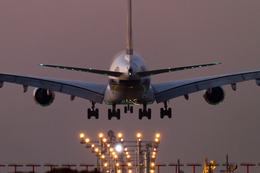 PINK_TEAM78さんが、成田国際空港で撮影したシンガポール航空 A380-841の航空フォト(飛行機 写真・画像)