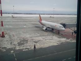 marinepolarisさんが、ウラジオストク空港で撮影したアシアナ航空 A320-232の航空フォト(飛行機 写真・画像)