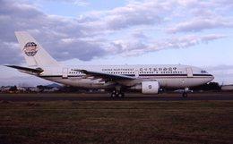 md11jbirdさんが、名古屋飛行場で撮影した中国西北航空 A310-222の航空フォト(飛行機 写真・画像)