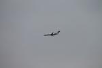 uhfxさんが、伊丹空港で撮影したアイベックスエアラインズ CL-600-2B19 Regional Jet CRJ-100LRの航空フォト(飛行機 写真・画像)