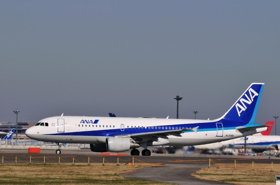 aMigOさんの全日空 Airbus A320 (JA206A) 航空フォト