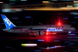 ヒットさんが、羽田空港で撮影した全日空 787-8 Dreamlinerの航空フォト(写真)