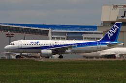 speedbirdさんが、成田国際空港で撮影した全日空 A320-211の航空フォト(飛行機 写真・画像)