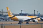 ひでかずさんが、成田国際空港で撮影したスクート (〜2017) 777-212/ERの航空フォト(飛行機 写真・画像)