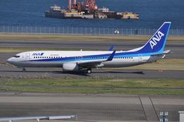 ぶる~すかい。さんが、羽田空港で撮影した全日空 737-881の航空フォト(飛行機 写真・画像)