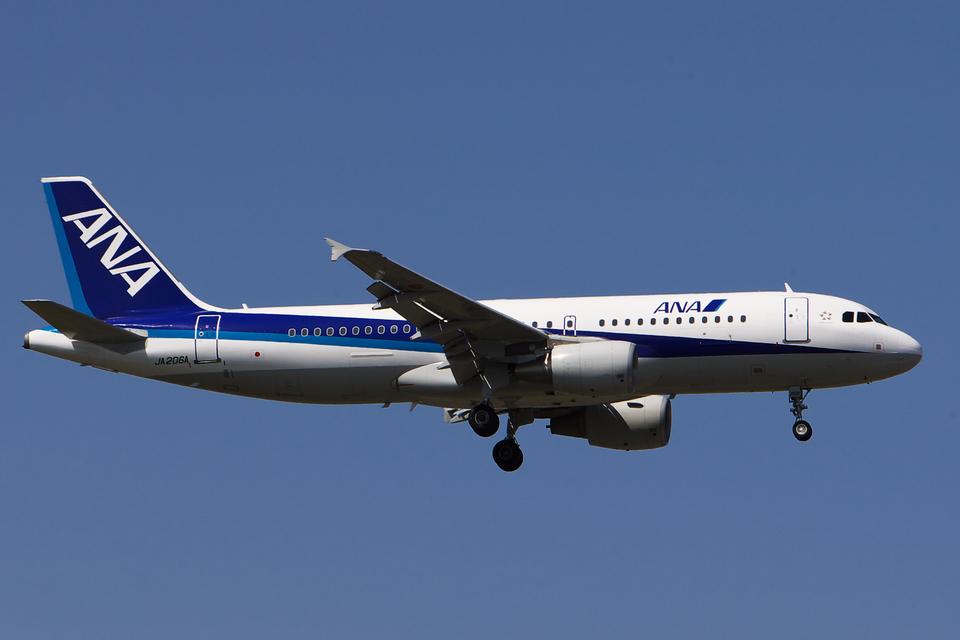 hiko_chunenさんの全日空 Airbus A320 (JA206A) 航空フォト