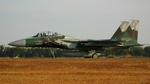 asuto_fさんが、新田原基地で撮影した航空自衛隊 F-15DJ Eagleの航空フォト(写真)