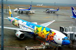 rjnsphotoclub-No.07さんが、羽田空港で撮影した全日空 777-381の航空フォト(写真)