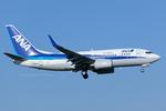 Scotchさんが、成田国際空港で撮影した全日空 737-781の航空フォト(写真)