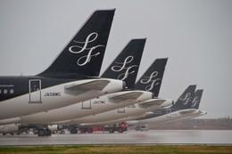 仙人2016さんが、北九州空港で撮影したスターフライヤー A320-214の航空フォト(写真)