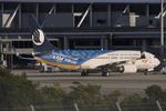 WING_ACEさんが、関西国際空港で撮影した山東航空 737-85Nの航空フォト(飛行機 写真・画像)