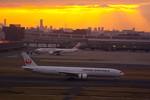 rjnsphotoclub-No.07さんが、羽田空港で撮影した日本航空 777-346の航空フォト(飛行機 写真・画像)