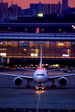 rjnsphotoclub-No.07さんが、羽田空港で撮影した日本航空 777-246/ERの航空フォト(飛行機 写真・画像)