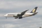 matsuさんが、ロサンゼルス国際空港で撮影したシンガポール航空 A380-841の航空フォト(飛行機 写真・画像)