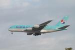 matsuさんが、ロサンゼルス国際空港で撮影した大韓航空 A380-861の航空フォト(飛行機 写真・画像)