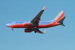 matsuさんが、ロサンゼルス国際空港で撮影したサウスウェスト航空 737-7H4の航空フォト(写真)