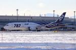 rjccさんが、新千歳空港で撮影した全日空 787-8 Dreamlinerの航空フォト(写真)