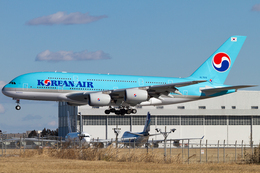 PINK_TEAM78さんが、成田国際空港で撮影した大韓航空 A380-861の航空フォト(飛行機 写真・画像)