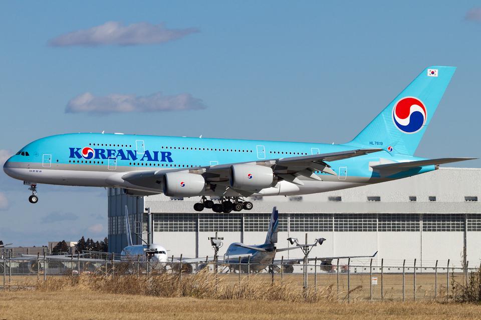 PINK_TEAM78さんの大韓航空 Airbus A380 (HL7619) 航空フォト