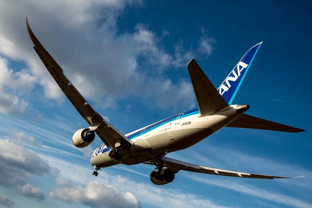 Kunikさんが、伊丹空港で撮影した全日空 787-8 Dreamlinerの航空フォト(飛行機 写真・画像)