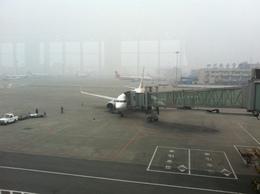 heinzさんが、成都双流国際空港で撮影した全日空 737-781の航空フォト(飛行機 写真・画像)