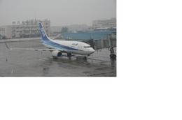 hiroshiyさんが、成都双流国際空港で撮影した全日空 737-781の航空フォト(飛行機 写真・画像)