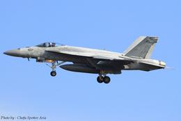 Chofu Spotter Ariaさんが、厚木飛行場で撮影したアメリカ海軍 F/A-18E Super Hornetの航空フォト(写真)
