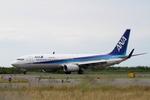 chalk2さんが、新潟空港で撮影した全日空 737-881の航空フォト(写真)