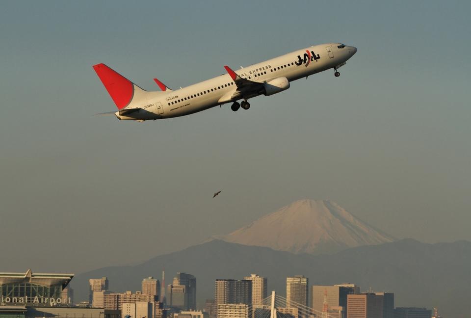 O-TOTOさんのJALエクスプレス Boeing 737-800 (JA328J) 航空フォト