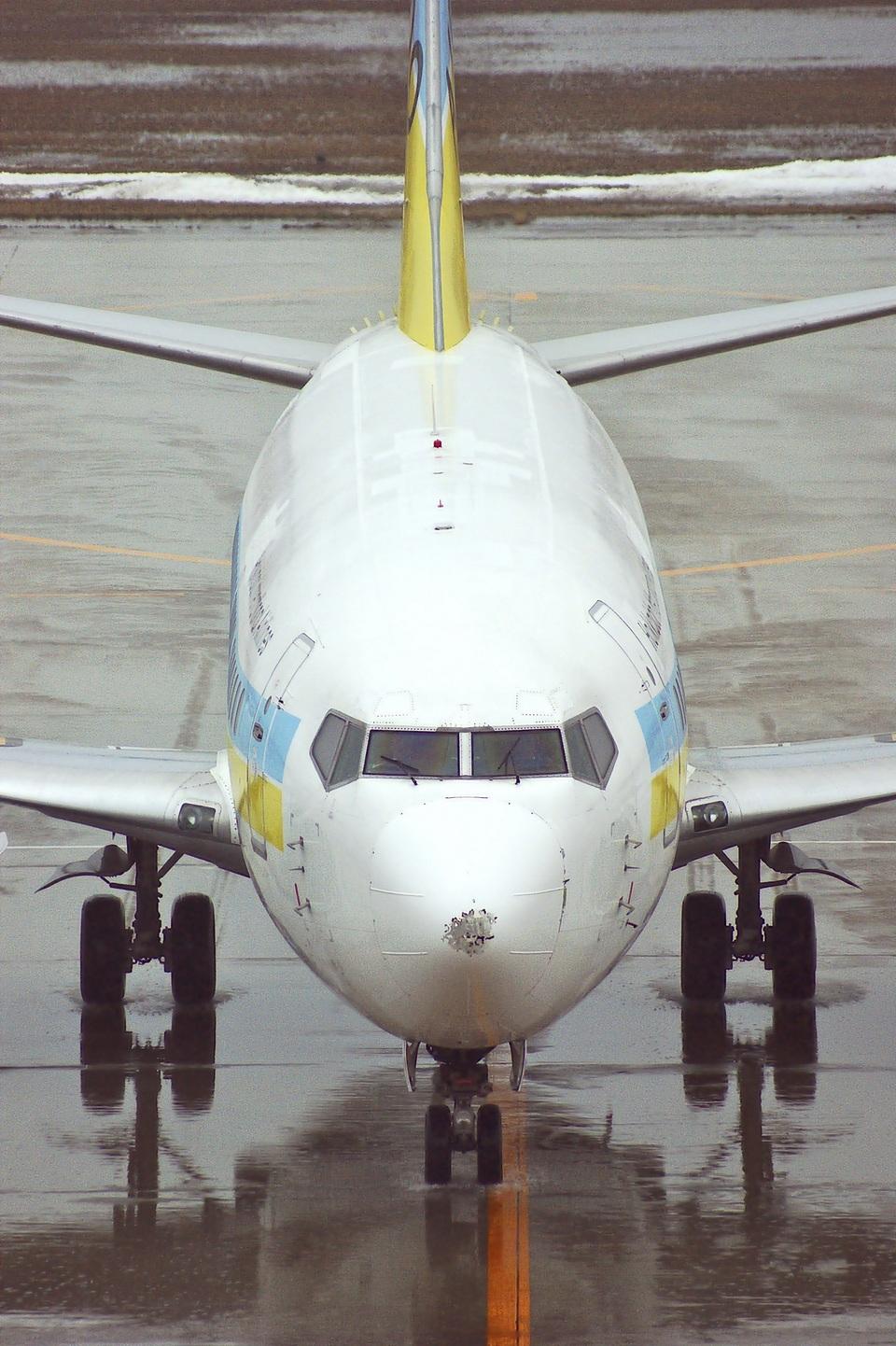 BELL602さんのAIR DO Boeing 737-500 (JA300K) 航空フォト