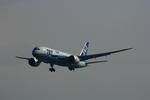 SGR RTさんが、羽田空港で撮影した全日空 787-8 Dreamlinerの航空フォト(写真)