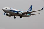 xingyeさんが、瀋陽桃仙国際空港で撮影した全日空 737-781の航空フォト(写真)