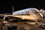 WING_ACEさんが、成田国際空港で撮影したシンガポール航空 A380-841の航空フォト(飛行機 写真・画像)