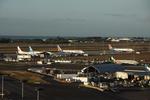 WING_ACEさんが、ダニエル・K・イノウエ国際空港で撮影した中国国際航空 737-79Lの航空フォト(飛行機 写真・画像)