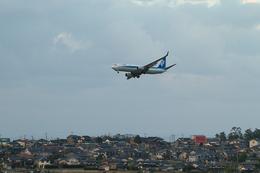 鳥取空港 - Tottori Airport [TTJ/RJOR]で撮影された全日空 - All Nippon Airways [NH/ANA]の航空機写真