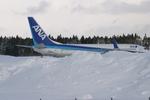 レガッテムさんが、秋田空港で撮影した全日空 737-881の航空フォト(写真)